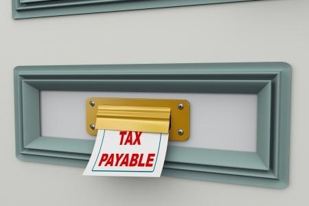 Piiratud käibemaksukohuslane